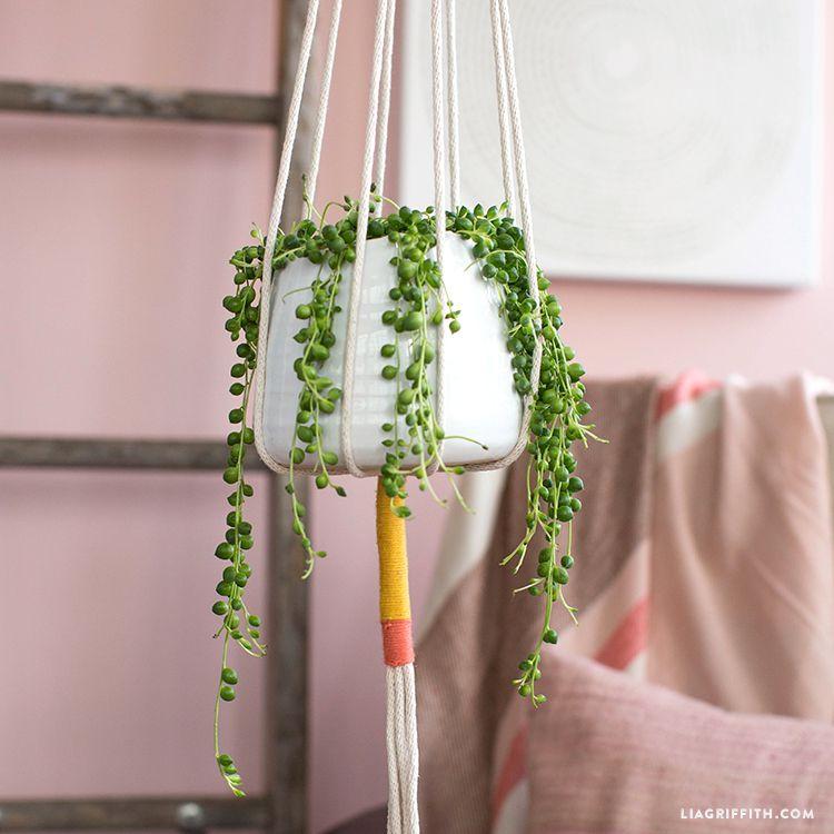 easy rope plant holder