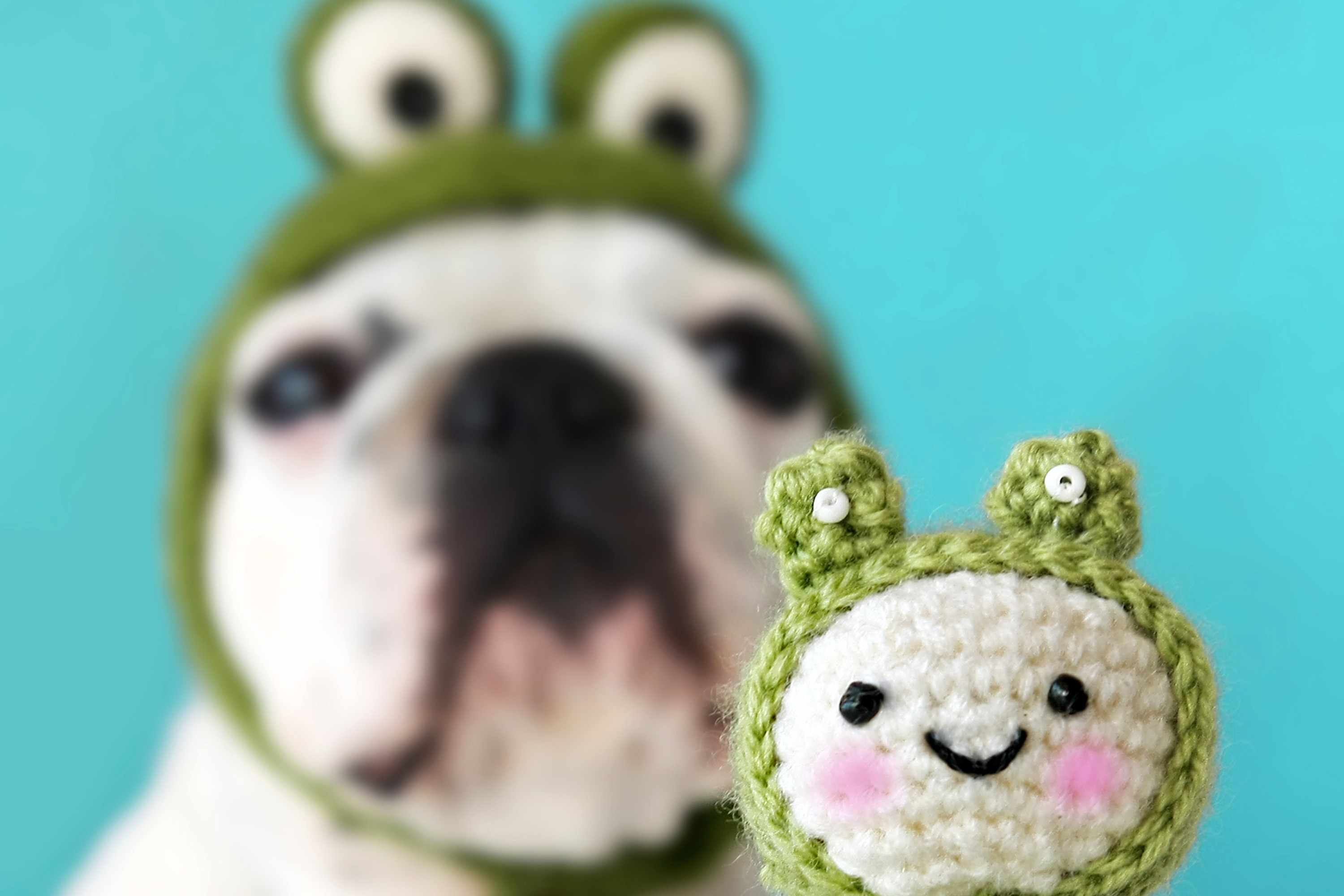 d93f84419d9 Crocheting and creativity turn an adorable dog into an adorable frog