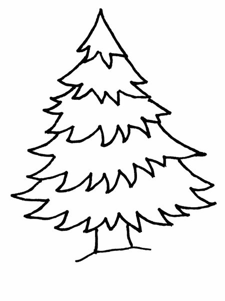 Christmas Tree Coloring Pages At Coloringws A Pine