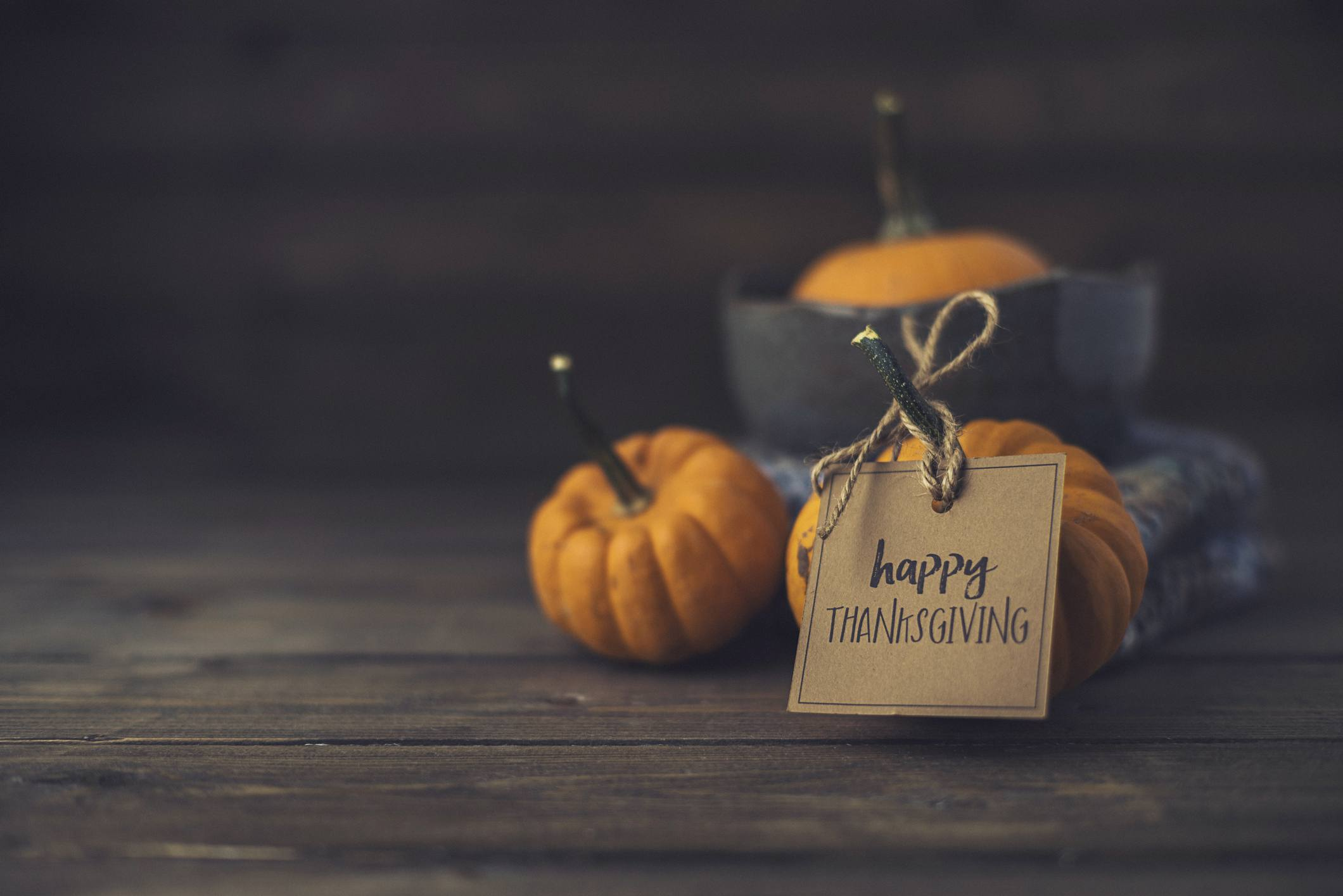 Mini pumpkins and Happy Thanksgiving message