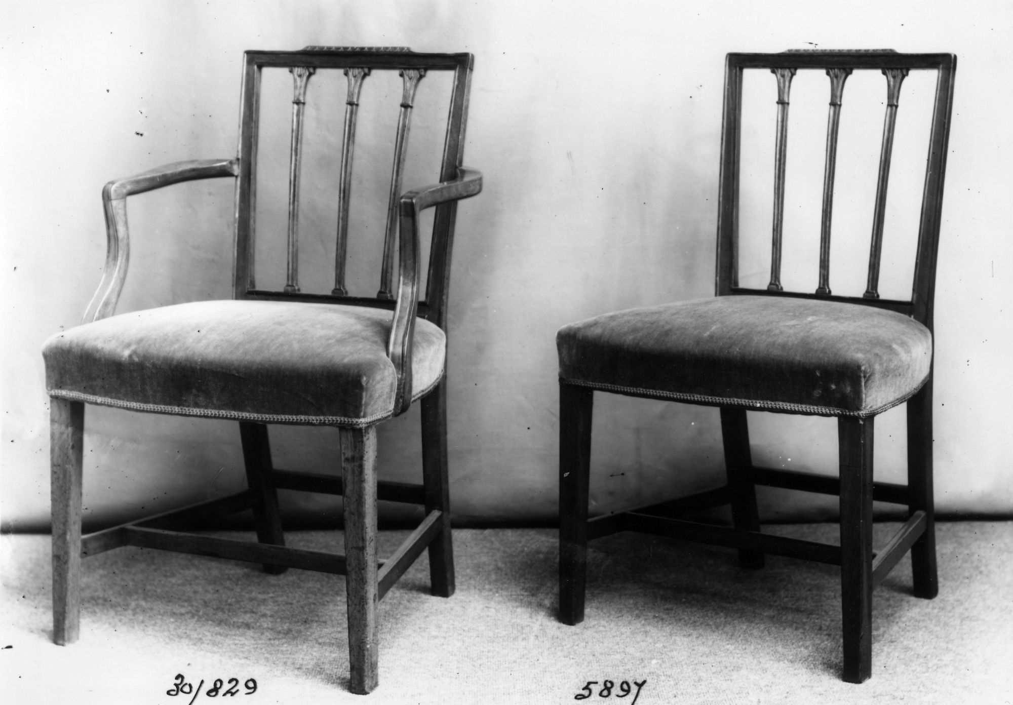 Sheraton chairs