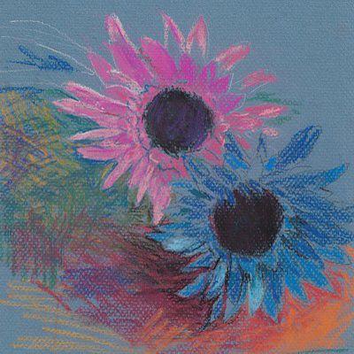 pastel Chrysanthemum sketch