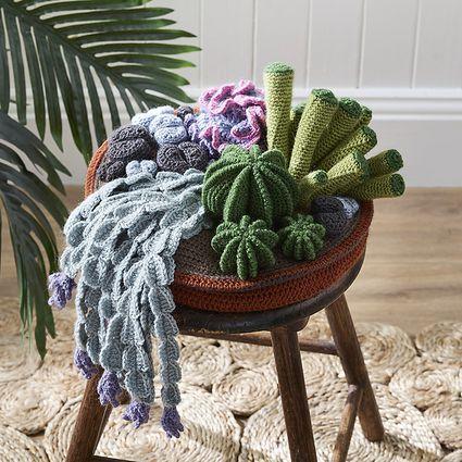 A crochet succulent garden
