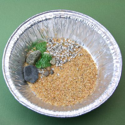 Sand, pebbles and artificial plants set into a metal tin to begin a miniature pond from e-z water.