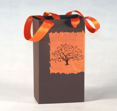 Free Printable Party Templates to Make Gift Bags and Boxes