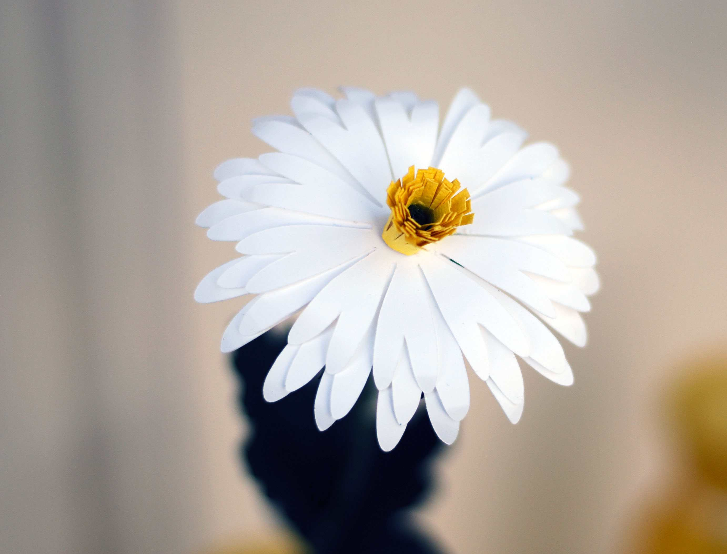 How To Make A Sweet Paper Daisy
