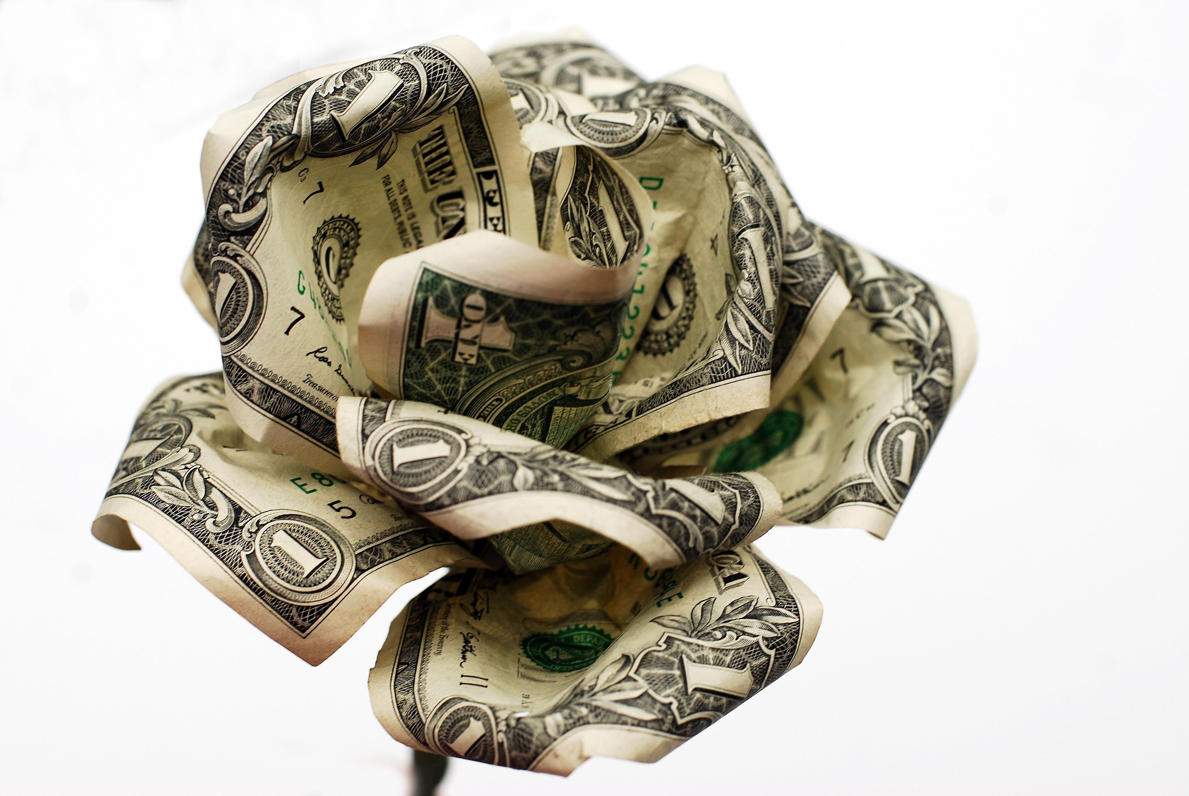 A finished money rose