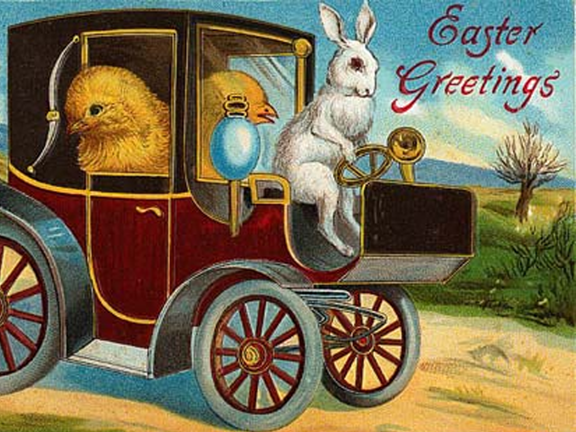 A Victorian Easter bunny driving a an old car